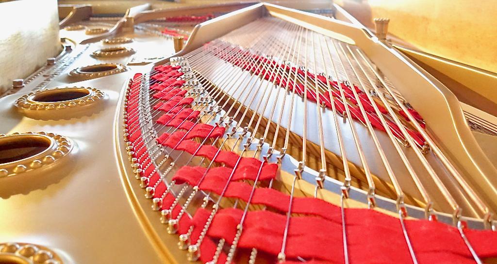 Instrumentenstillleben. © Jürgen carstensen