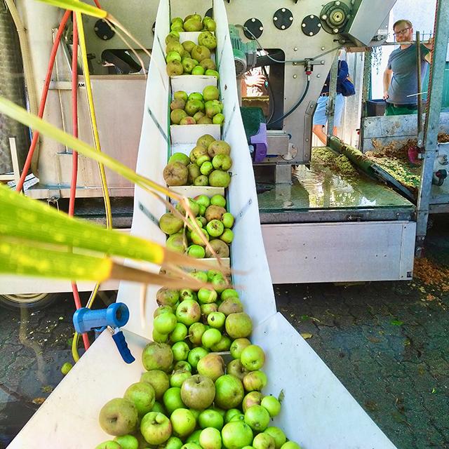Ausgeschenkt wird der regionale Apfelsaft nun becherweise in der Yokohama Coffee Bar – solange der Vorrat reicht. © Wolfgang Weisbrod-Weber